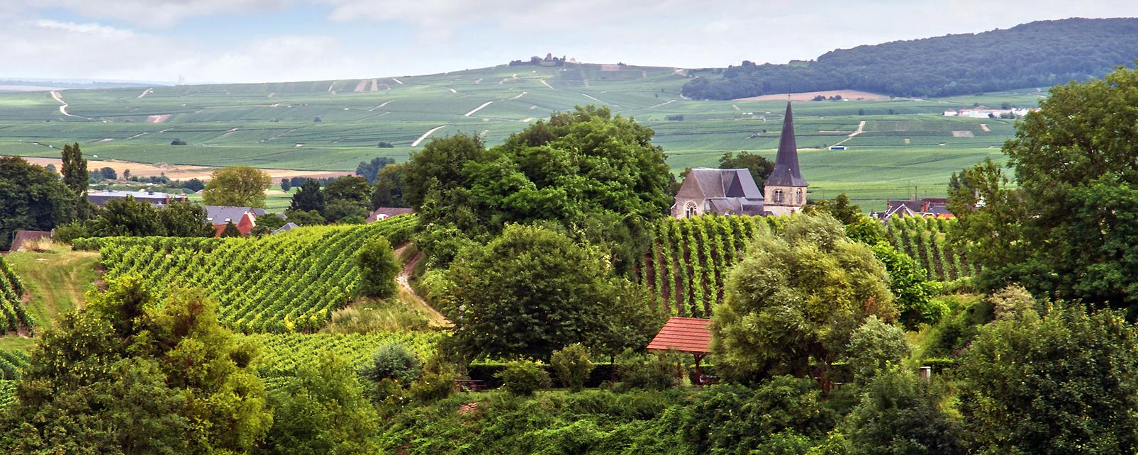 Top 5 des villes à visiter en Champagne Ardenne 11