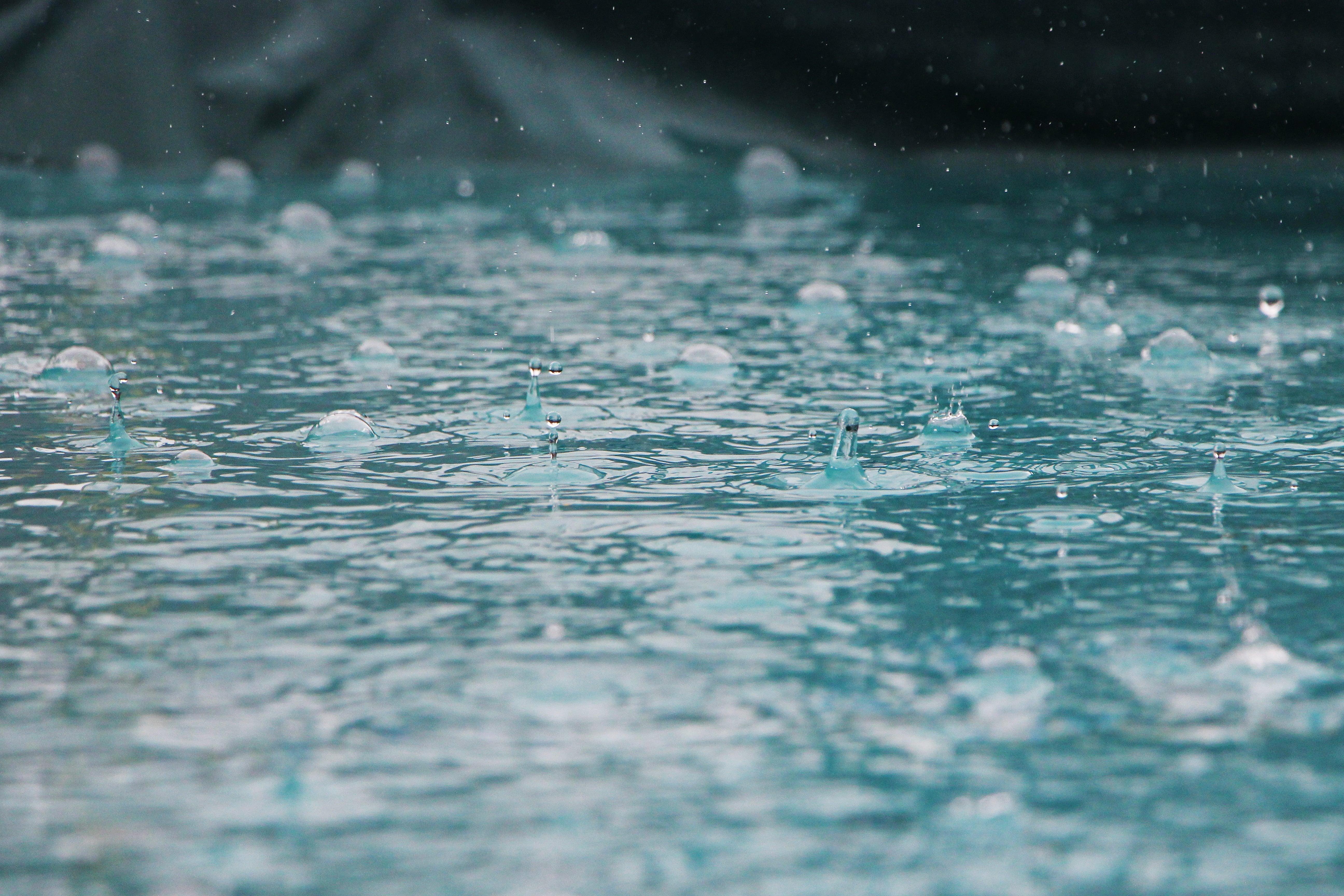 Quel est le meilleur réservoir d'eau de pluie ?