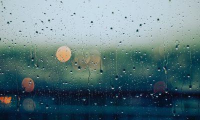 Problèmes d'humidité : Les causes, les conséquences et les solutions 7