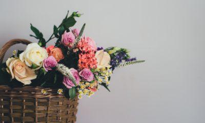 Quels avantages à créer un magasin de fleur avec la franchise ? 40