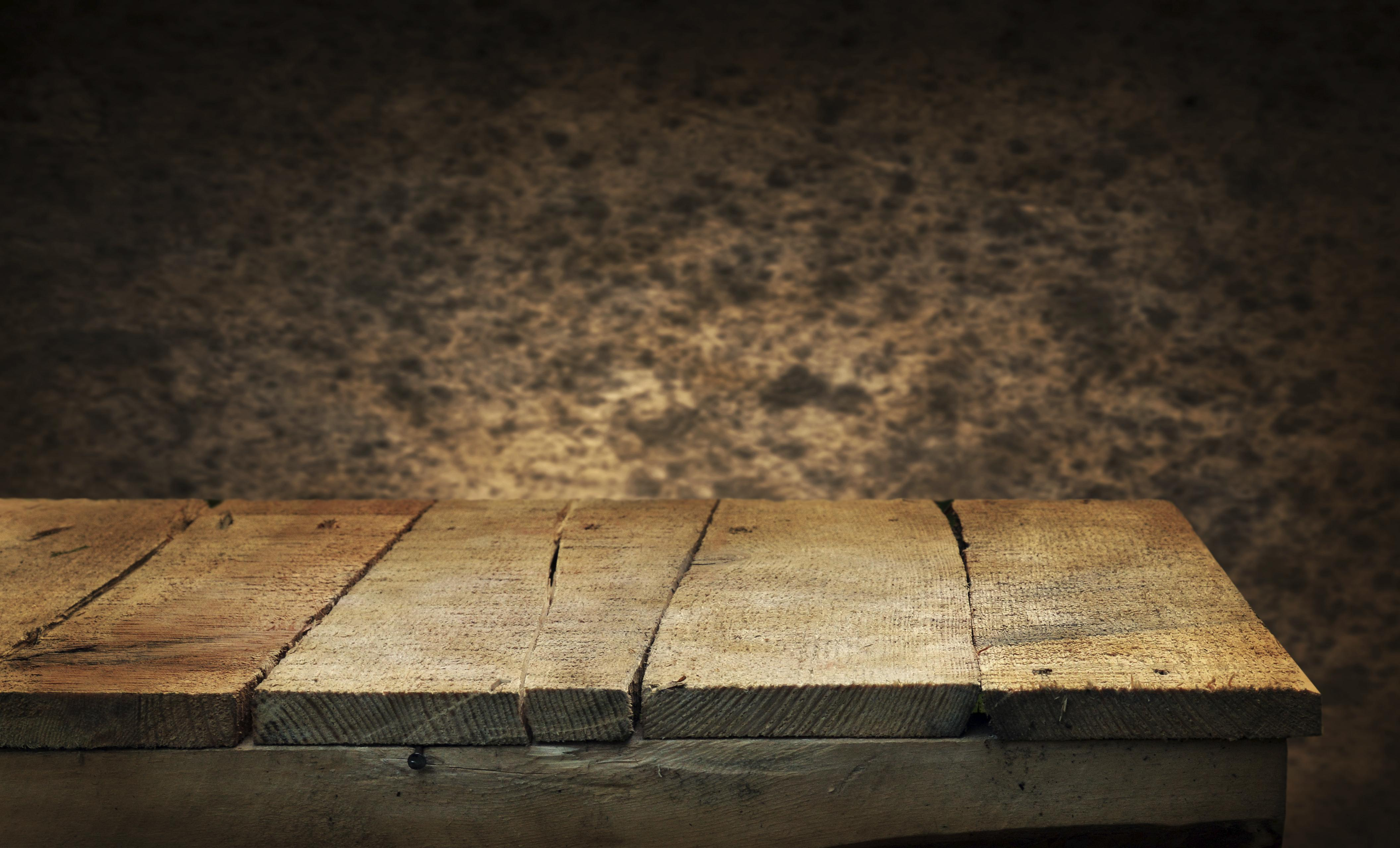 Que faire contre les termites? 1