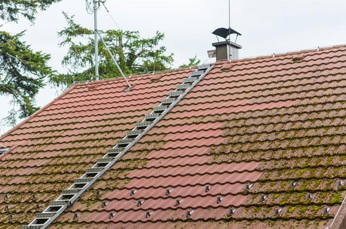 Pourquoi procéder au démoussage de la toiture? 1