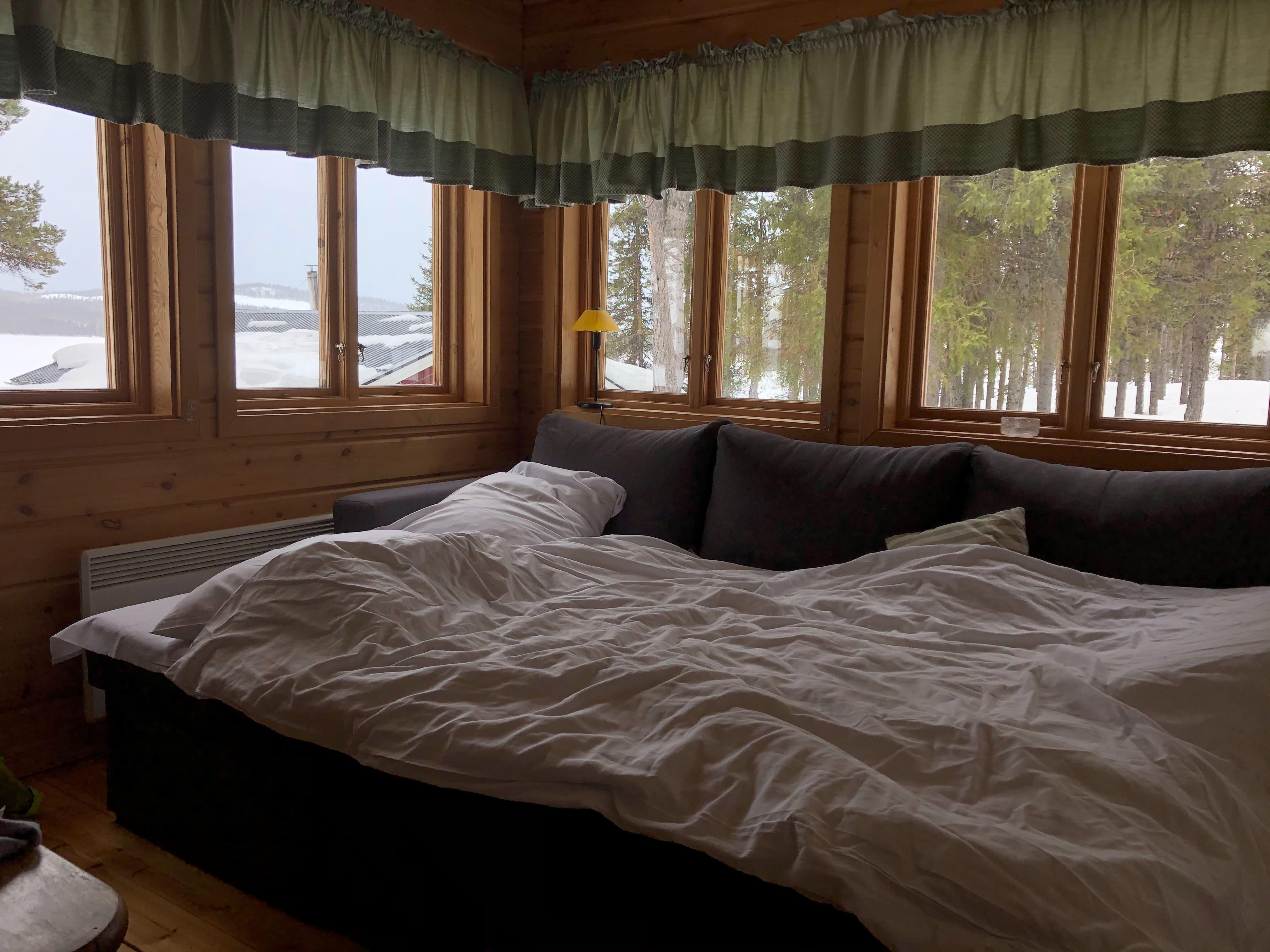 Punaise de lit : comment s'en débarrasser ? 1